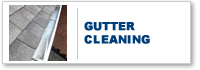 Gutter Cleaning Bury